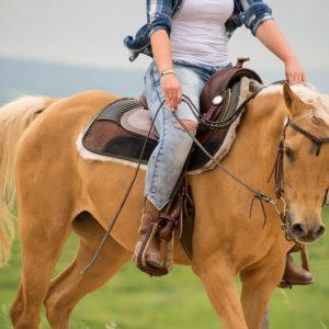 #1222 Western Dressage Ride and Review