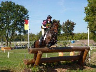 horse-1661664_640