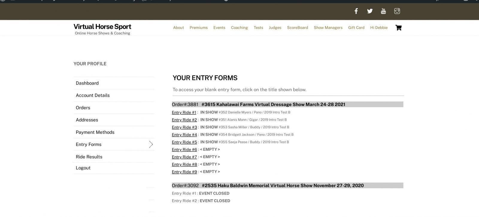 entryformdemo2
